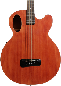 Spector Timbre Series Acoustic Bass Guitar