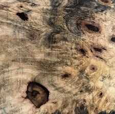 USA series buckeye burl 1 swatch
