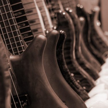 multiple Spector basses lined up
