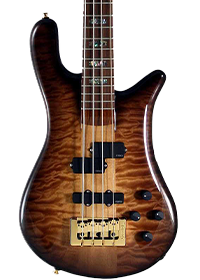 USA Spector bass in tobacco