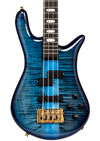 Blue Spector bass guitar