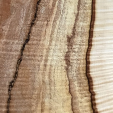 USA series spalted maple swatch