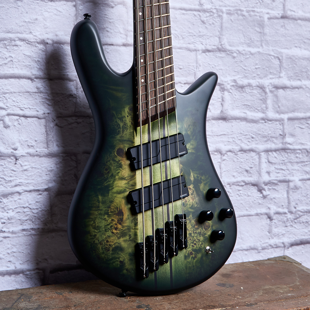 Fanned Spectors NS-Dimension_Haunted-Moss_Five-String