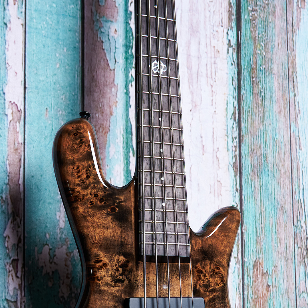 top of brown Spector bass body in front of blue wood panels