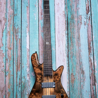 brown Spector bass in front of blue wood panels