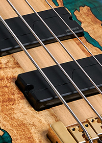 close up of bass strings over pickups on a Spector USA bass